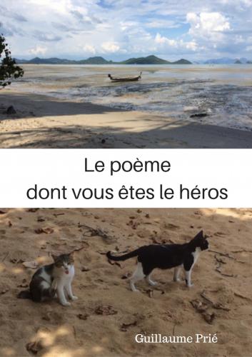 Le poème dont vous êtes le héros – Guillaume Prié –2017