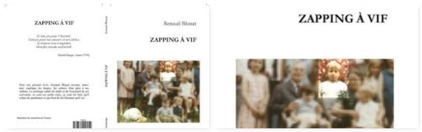 Zapping à vif – Renaud Blunat –2018